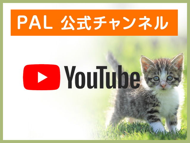You tube PAL公式チャンネル
