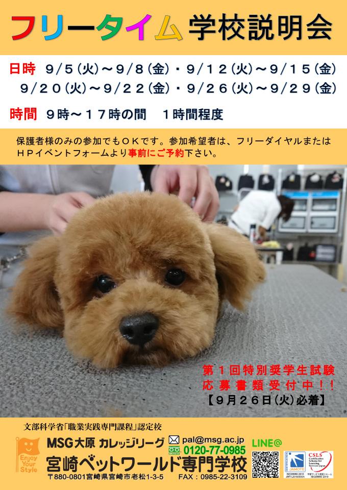 9月のフリータイム学校説明会【予約受付中】