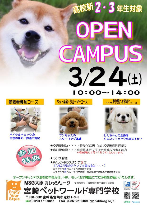 3月24日(土)オープンキャンパスのご案内