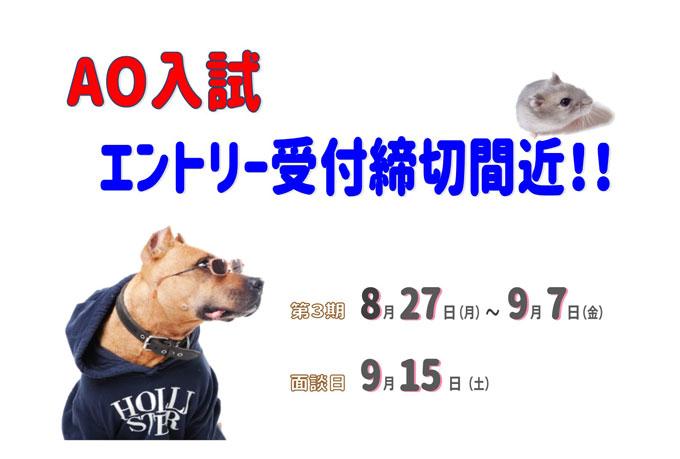 AOエントリー受付締切間近!!