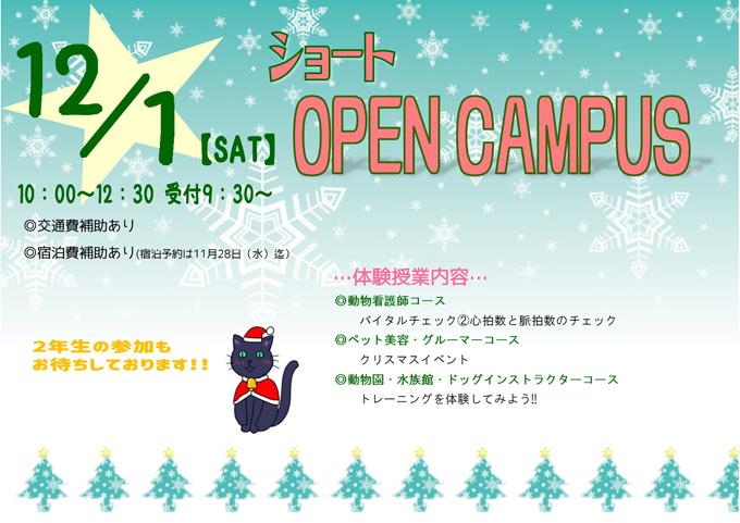 12月1日ショートオープンキャンパスのご案内
