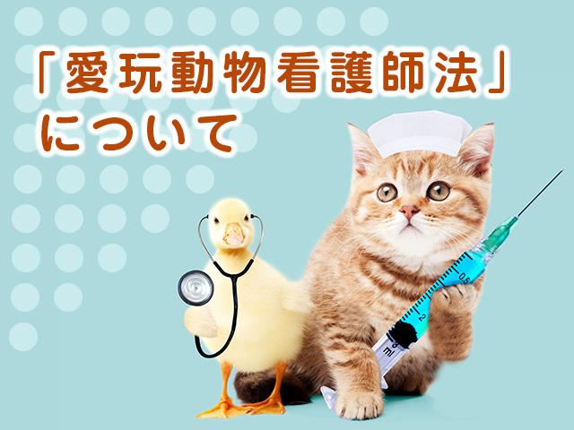 愛玩動物看護師法について