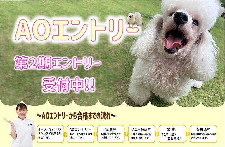 動物看護師コース AOエントリー第2期にて受付終了!!